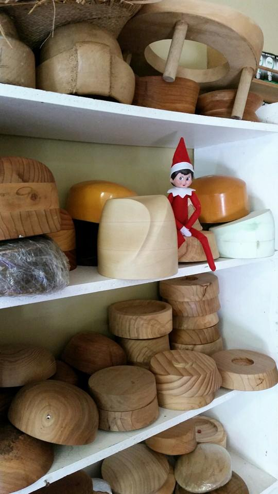 "the day ""Elfie"" showed up"